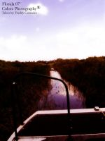 Florida Everglades pt. 2 by freddydubletyme