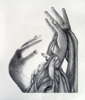 Hands by amelie89