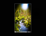 Mittlach France by drouch