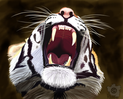 Roaring tiger by AlbinoRichie
