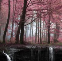 Premade Background 2 by yourfreestock