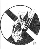 Wolverine: X-Man by Jason-Heichel