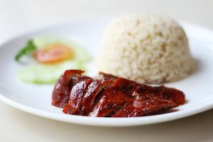Peking Duck and Hainan Rice by lalisa-doniho
