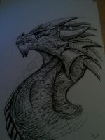 dragon head in pen by ThyMuse
