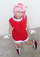 Amy Rose by NyappyMisako