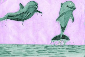 Dolphins_Color by dark-chocobo