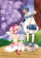 Battle Start - Madoka and Sayaka by ElfSedan