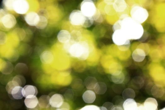 Bokeh 4 by thesilence77