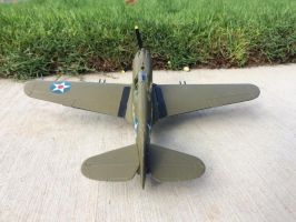 Curtiss P40 Pearl Harbor Tribute model by Jetster1