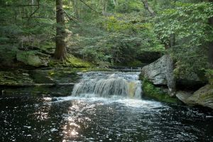 Vernooy Swimming Hole by ixbalam