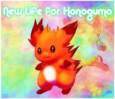 New life for honoguma by Pand-ASS