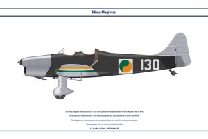 Magister Ireland 1 by WS-Clave