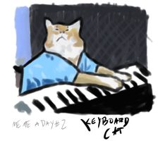 Meme A Day: Keyboard Cat by Conan27