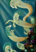 The dance of SeaHorses by whispersss