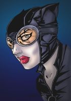 catwoman by kidnotorious by callyrose