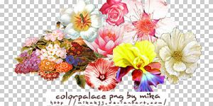 png_flowers_bymika by mikakjj