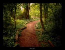 The Path by innerbeast