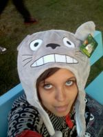 totoro by soul-number777