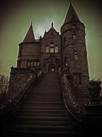 Teleborg Castle #4 by mli93