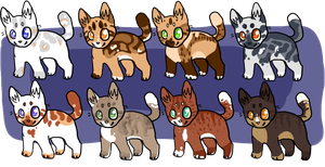 Cat Adopts by Ariendal