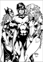 Nightwing and Friends by darthgaul