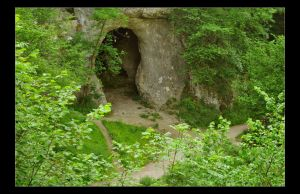 The Cave by Forestina-Fotos