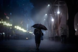 Braving the Night Rain 5 by dannyst