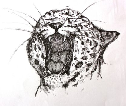 Leopard by NillaDream