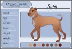 Dogs-of-Canidale: Sybil by Tazihound