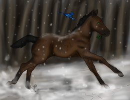 Shyane's Winter by NeonDefined