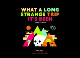 What A Long Strange Trip It's Been by Greenday2004