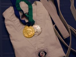 TKD Medals by MaryAnnBubna