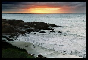 Augusta sunrise 5 by wildplaces