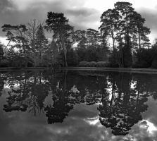 Sheffield Park 5971 by filmwaster
