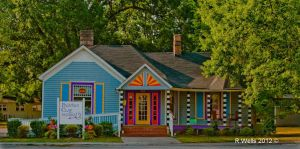 House Of Many Colors by Ray4359