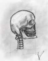 Sketchbook_Skull by MacRebisz