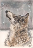 Daydreaming by LarimarDragon