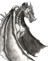 Dragon Scan by DarkeDny