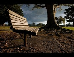 Earthly Bench by light-recycled