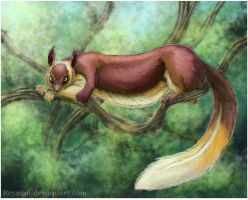 Indian Giant Squirrel by Reyxian