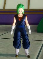 Brachi - Vegetto's Outfit by RT912
