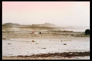 Mist on the Shoreline by unclejuice