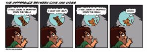 The difference between cats and dogs by Ian-Summers
