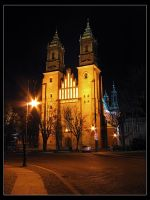 Poznan by Night: Cathedral II by Amnet