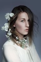 Gypsophila by Karaaaa
