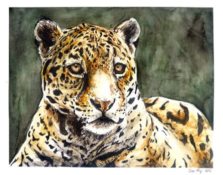 Jaguar by lost-nomad07