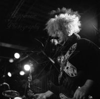 The Melvins Double Exposure by copperrein