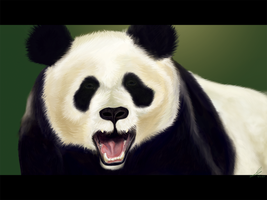 Panda by Karma-Green