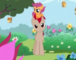 MLP Daddy Reddish Skill and Scootaloo by Pacman552