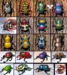 Lots of mini gourd Beetles! by ART-fromthe-HEART